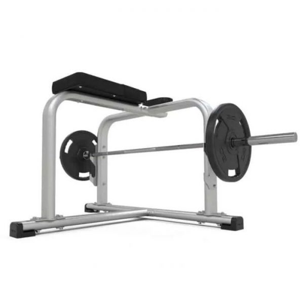 PHYSICAL COMPANY PRONE ROW BENCH