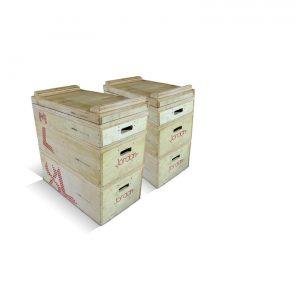 JORDAN TECHNIQUE BOXES